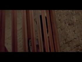 Nastassja Kinski in Cat People
