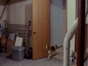 Portia Reiners - Twelve Thirty scn2