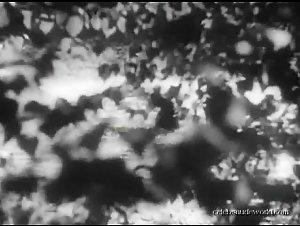 Hedy Lamarr - Ekstase (1933)