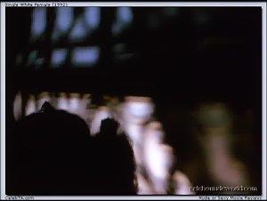 Bridget Fonda - Single White Female (1992)